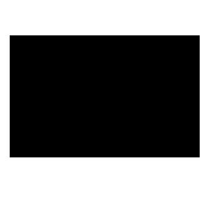 zmones icona